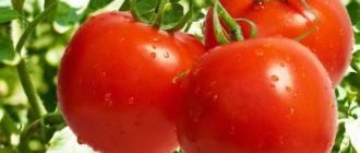 удобрения для помидоров