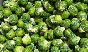 сажать брюссельскую капусту на рассаду