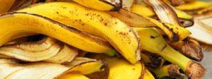 Банановая кожура как удобрение для рассады.