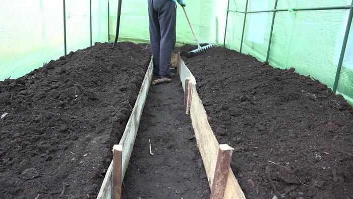 почва под помидоры